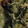 Realtree camo DG  Hydrographics Film Water Transfer Printing